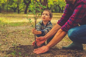 boy planting a tree with his dad